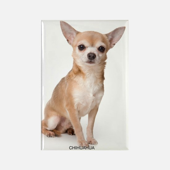 chihuahua311 Rectangle Magnet