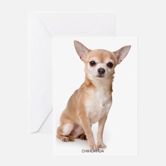 chihuahua311 Greeting Card