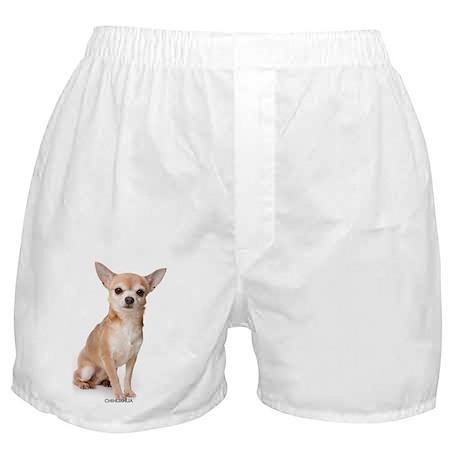 chihuahua311 Boxer Shorts