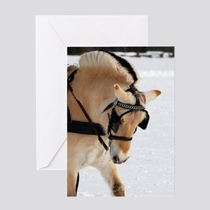 Winter hitch Greeting Cards