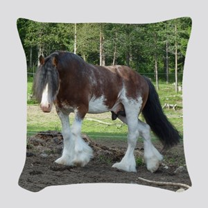 coverCLYDESDALE Woven Throw Pillow