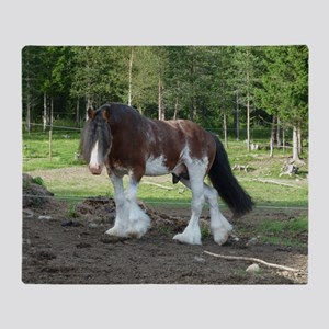 coverCLYDESDALE Throw Blanket