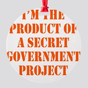 govt-project2 Round Ornament