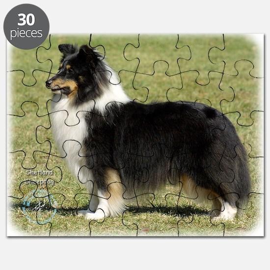 Shetland Sheepdog 9J088D-06 Puzzle