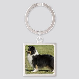 Shetland Sheepdog 9J088D-06 Square Keychain