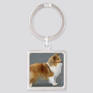 Shetland Sheepdog 8R003D-12 Square Keychain