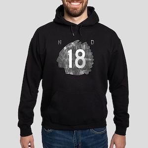 nd18 Hoodie (dark)