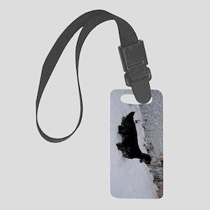 ovalkeychain Small Luggage Tag