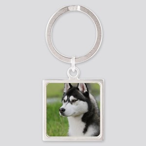Siberian Husky 9Y570D-006 Square Keychain
