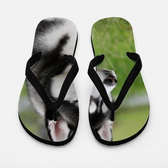 Siberian Husky 9Y570D-006 Flip Flops