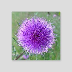 "Thistle flower Square Sticker 3"" x 3"""