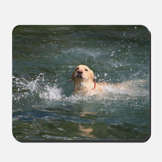 Dog in Water Mousepad
