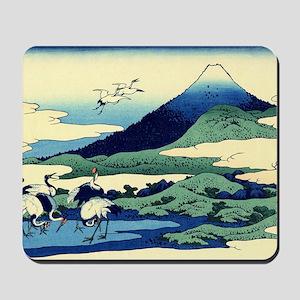cranes-sagami.travel Mousepad