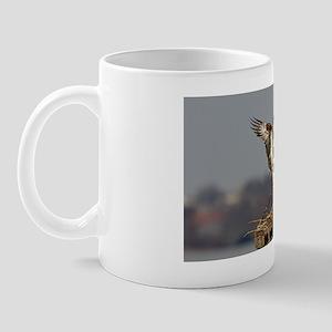 FIN_8663 Mug