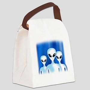GREY ALIEN Canvas Lunch Bag