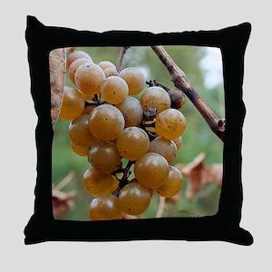 IMG_9863 18x24xC Throw Pillow