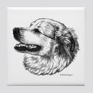 Pyr side view Tile Coaster