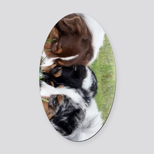 3dogs 459_ipad_case Oval Car Magnet