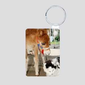 Orphaned Foal - Joy Aluminum Photo Keychain