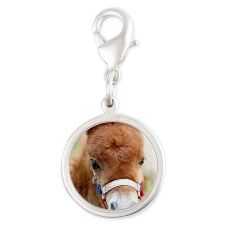 Orphaned Foal - Joy Silver Round Charm