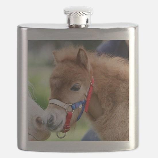 Orphaned Foal - Joy Flask