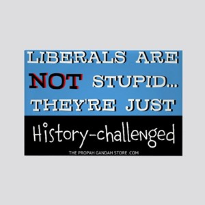 Liberals are NOT stupid Magnets