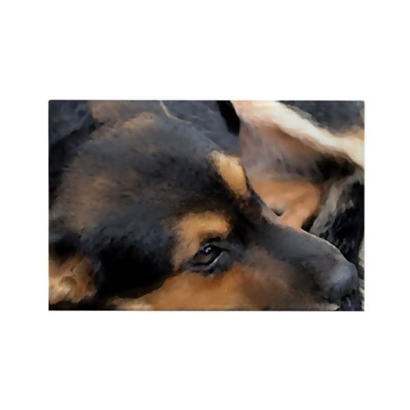 Curled Up Cattle Dog Rectangle Magnet (10 pack)