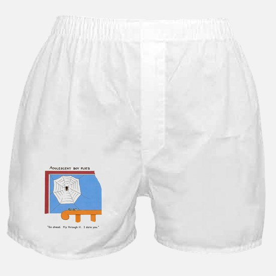 Adolescent boy flies Boxer Shorts