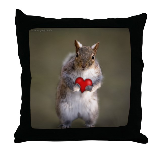 Cute Squirrel Lover s Throw Pillow by imagesbycharlie