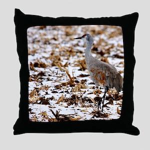 IMG_2101cal Throw Pillow