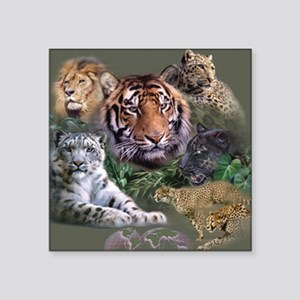 "ip001528catsbig cats3333 Square Sticker 3"" x 3"""