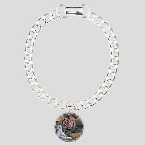 ip001528catsbig cats3333 Charm Bracelet, One Charm