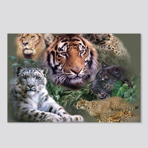 ip001528catsbig cats3333 Postcards (Package of 8)