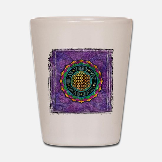 Awakening Consciousness Shot Glass