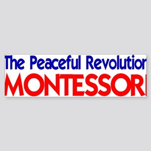 Peaceful Revolution Bumper Sticker