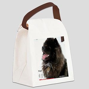IMG_0494 kona japan Canvas Lunch Bag