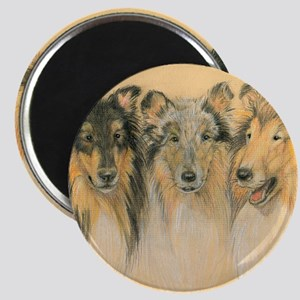 Collie Adults Magnet