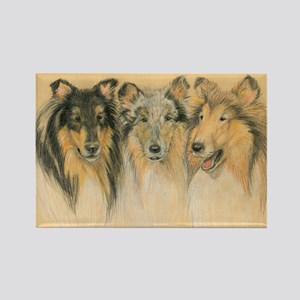 Collie Adults Rectangle Magnet