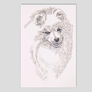 American_Eskimo_Dog_Kline Postcards (Package of 8)