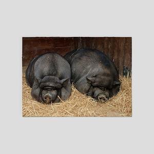 Pot Bellied Pigs Lisbon Zoo_July_20 5'x7'Area Rug