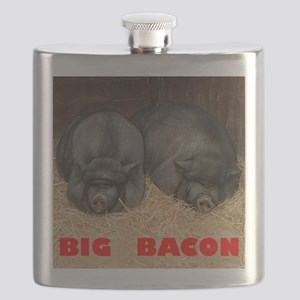 Pot_Bellied_Pigs_Big_Bacon_10by10 Flask