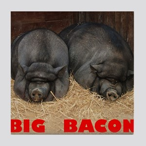 Pot_Bellied_Pigs_Big_Bacon_10by10 Tile Coaster
