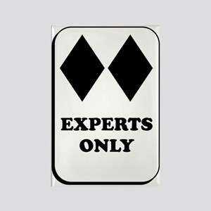 Experts Only Rectangle Magnet