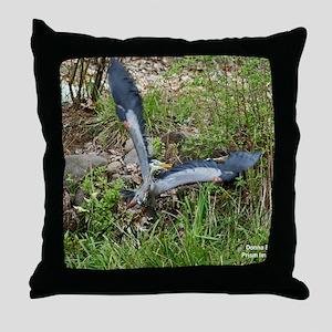 IMG_0869 24x18 Throw Pillow