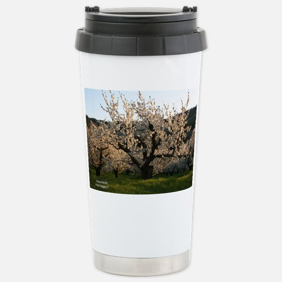 IMG_4552 24x18 20%li Stainless Steel Travel Mug