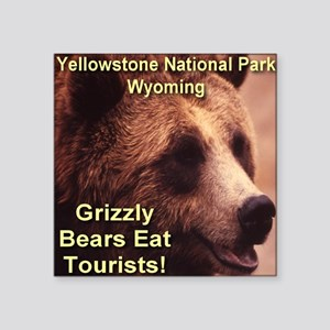 """grizzly_bears_eat_tourists Square Sticker 3"""" x 3"""""""