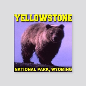 "grizzlybear_yellowstone_np Square Sticker 3"" x 3"""