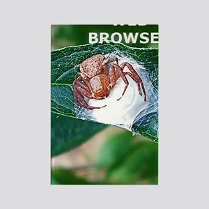 Spider Funny Web Browser iPhone 4 Rectangle Magnet