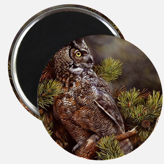 OWL 311 Magnet