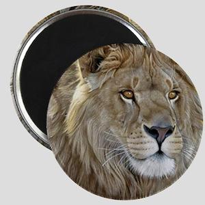 lion-portrait-t-shirt Magnet